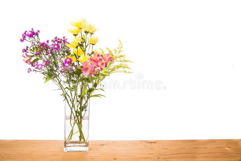 Στάσιμο νερό μέσα στην πιθανή θέση αναπαραγωγής βάζων λουλουδιών για το μ στοκ εικόνα