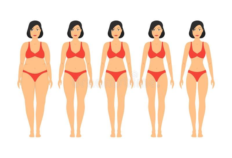 Στάδια αδυνατίσματος γυναικών κινούμενων σχεδίων καθορισμένα διάνυσμα διανυσματική απεικόνιση