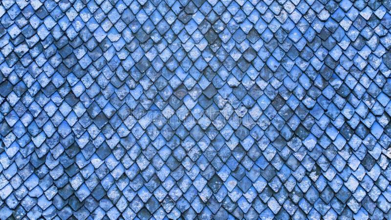 Στέγη φιαγμένη από παλαιά κεραμίδια στοκ φωτογραφία με δικαίωμα ελεύθερης χρήσης