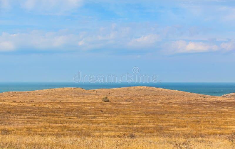 Στέπα και θάλασσα στο υπόβαθρο στοκ εικόνα