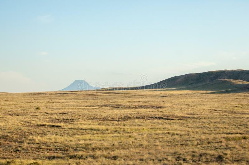 Στέπα το καλοκαίρι Κεντρική Ασία Καζακστάν στοκ εικόνες με δικαίωμα ελεύθερης χρήσης