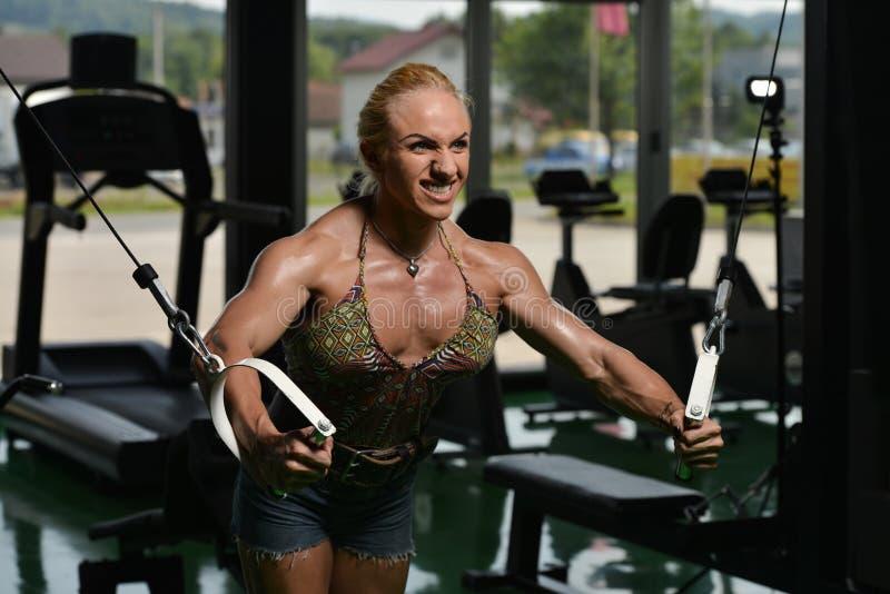 Στήθος Workout διασταυρώσεων καλωδίων στοκ εικόνα