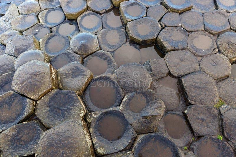 Στήλες βασαλτών του υπερυψωμένου μονοπατιού γιγάντων στοκ φωτογραφίες με δικαίωμα ελεύθερης χρήσης