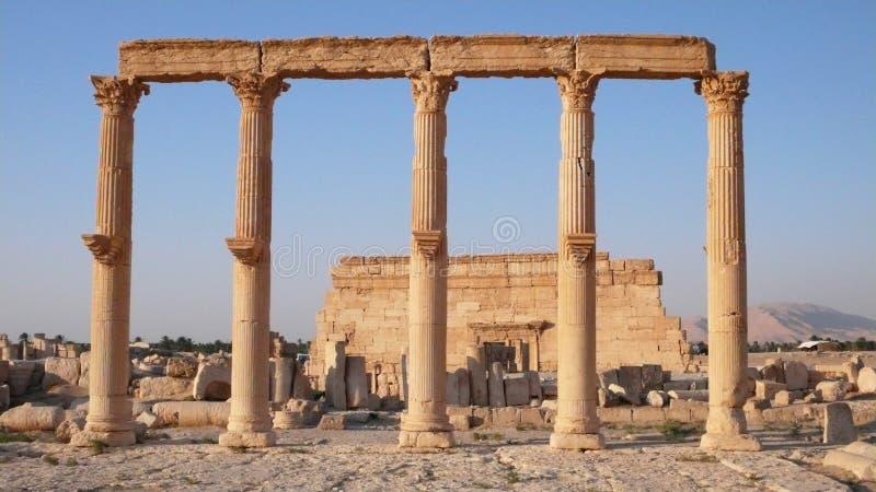 Στήλες και αγορά Palmyra. Συρία στοκ φωτογραφία