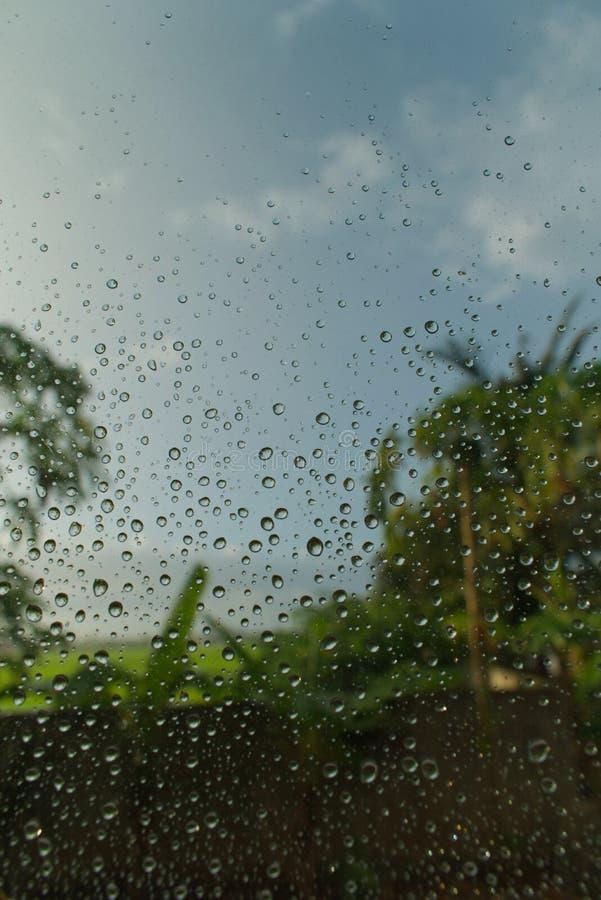 Σταγόνες βροχής στα παράθυρα με τη μουτζουρωμένη πράσινη άποψη στο υπόβαθρο στοκ εικόνες