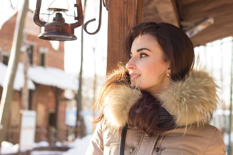 σταθμεύστε τη χειμερινή γ στοκ εικόνα με δικαίωμα ελεύθερης χρήσης