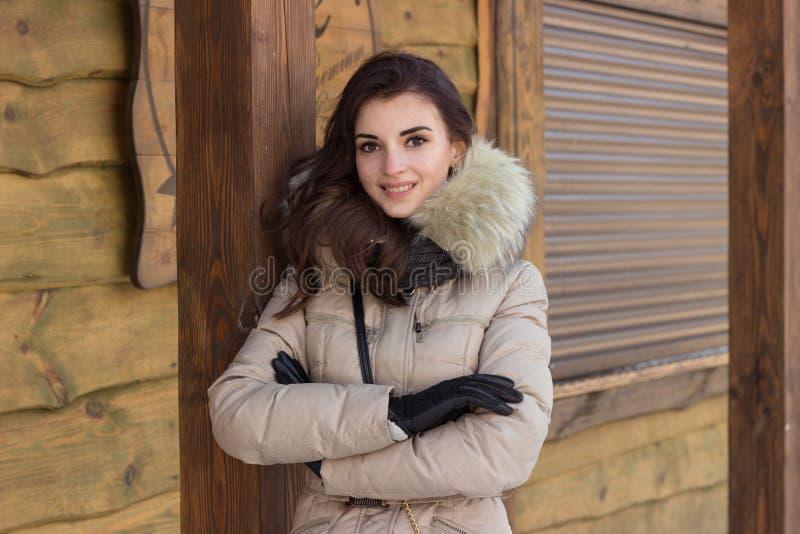 σταθμεύστε τη χειμερινή γ στοκ εικόνες