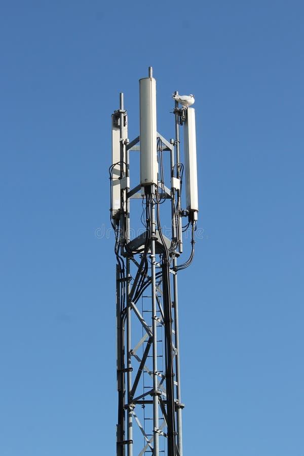 Σταθμός βάσης κινητών τηλεφώνων τρεις-τομέα στον πύργο δοκών δικτυωτού πλέγματος στοκ εικόνες με δικαίωμα ελεύθερης χρήσης