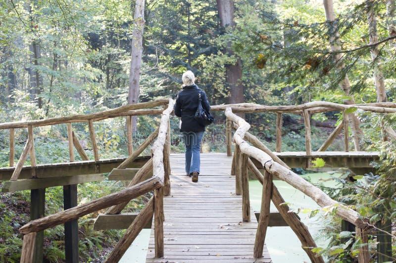 Σταυροδρόμι γεφυρών στοκ φωτογραφία