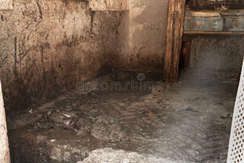 Σταύλος στο εγχώριο αγρόκτημα Κοπριά στη σιταποθήκη στοκ εικόνα με δικαίωμα ελεύθερης χρήσης