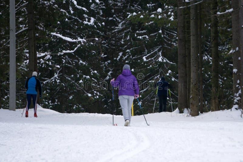 Στα κοστούμια σκι στις διακοπές Κορίτσι νεαρών άνδρων Κορίτσι που περπατά στο ίχνος στοκ εικόνα