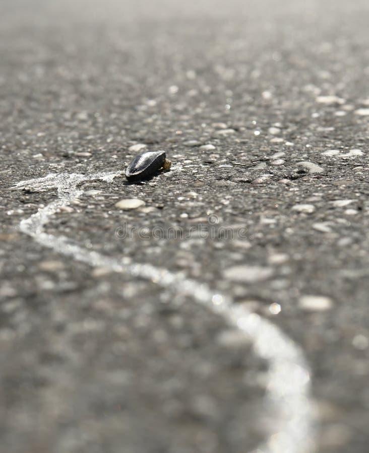 Στεγνωμένος γυμνοσάλιαγκας σε μια οδό στοκ φωτογραφία με δικαίωμα ελεύθερης χρήσης