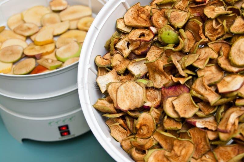 Στεγνωτήρας φρούτων με τα κομμάτια μήλων στοκ φωτογραφία