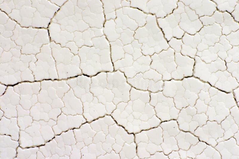 στενές ρωγμές που ξεραίνουν fractal το λευκό επιφάνειας επάνω στοκ εικόνα με δικαίωμα ελεύθερης χρήσης