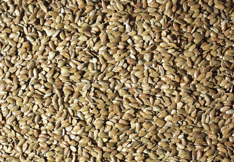 Ακατέργαστο flaxseed στοκ εικόνα