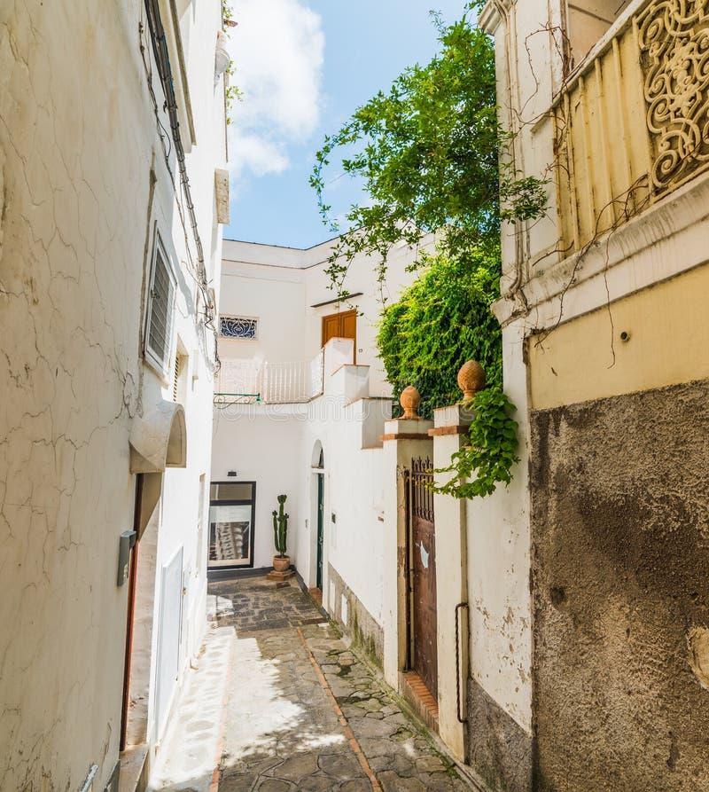 Στενή αλέα στην παλαιά πόλη Capri στοκ φωτογραφία με δικαίωμα ελεύθερης χρήσης