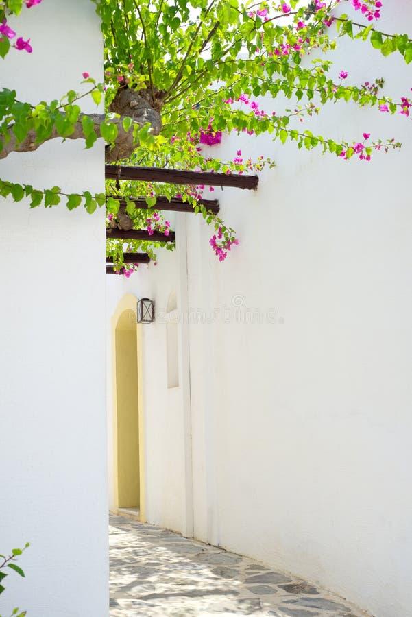 Στενή αλέα στο νησί της Κρήτης, Ελλάδα στοκ φωτογραφίες