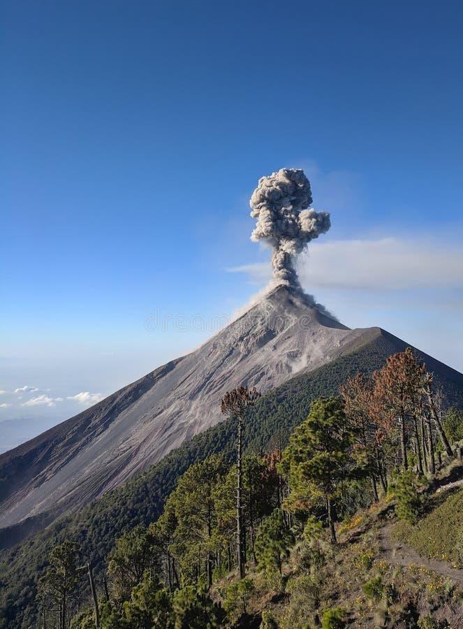 Στενή ανεμπόδιστη άποψη της έκρηξης ηφαιστείων Fuego, Γουατεμάλα, Κεντρική Αμερική στοκ εικόνα