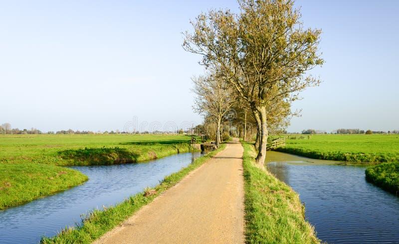 Στενή πορεία ποδηλάτων σε μια ολλανδική περιοχή πόλντερ στοκ εικόνες
