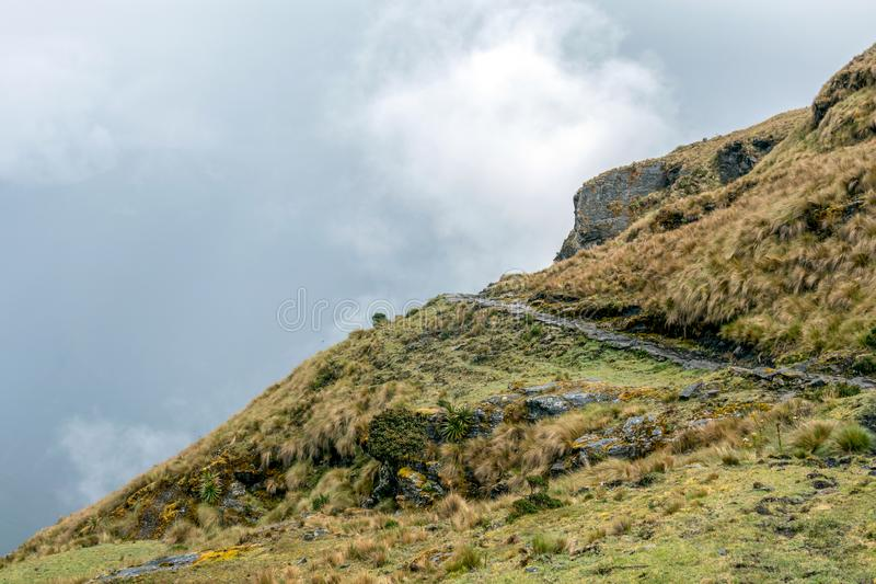 Στενή πορεία στο ίχνος πεζοπορίας στα περουβιανά βουνά μεγάλου υψομέτρου μεταξύ Maizal και Yanama, Περού στοκ εικόνες
