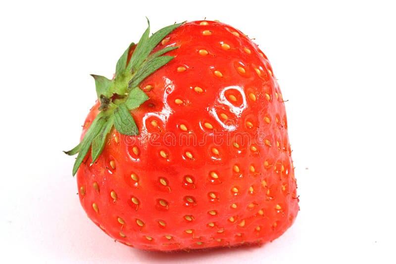 στενή φράουλα επάνω στοκ φωτογραφία με δικαίωμα ελεύθερης χρήσης