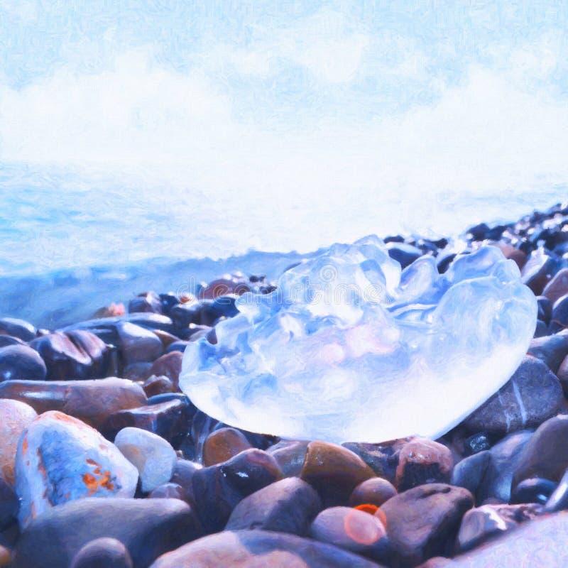 στενή jellyfish θάλασσα επάνω στοκ εικόνες