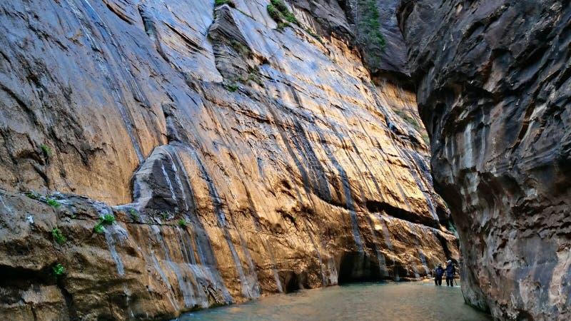 Στενεύει στο εθνικό πάρκο Zion στοκ εικόνες