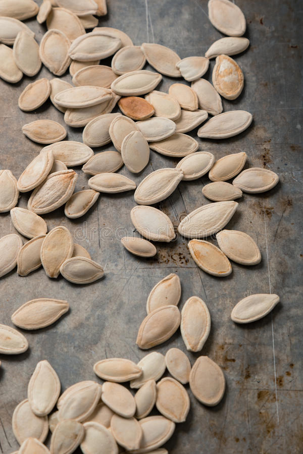 στενοί σπόροι κολοκύθας τροφίμων ανασκόπησης επάνω στοκ φωτογραφία με δικαίωμα ελεύθερης χρήσης