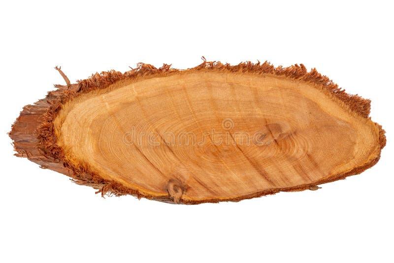 Στενόμακρα ξύλινα δαχτυλίδια διατομής φετών του δέντρου, σύσταση ιουνιπέρων, στοκ εικόνες με δικαίωμα ελεύθερης χρήσης