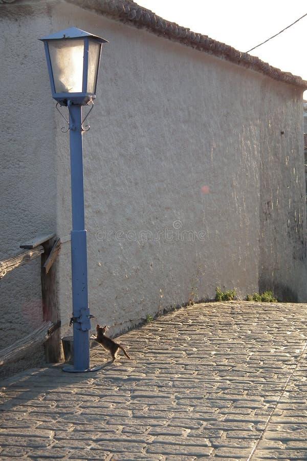 Στενός διάδρομος τη sanny ημέρα στοκ φωτογραφία