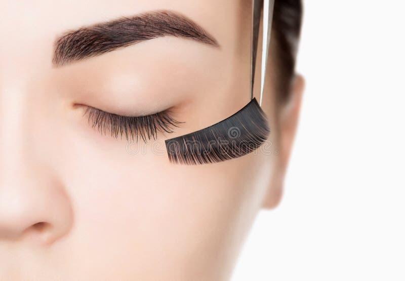 Στενός επάνω διαδικασίας αφαίρεσης Eyelash στοκ φωτογραφία