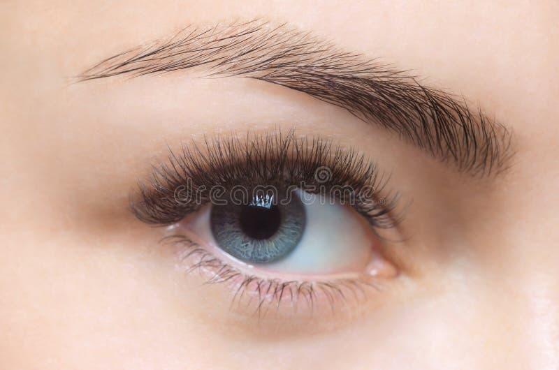 Στενός επάνω διαδικασίας αφαίρεσης Eyelash beautiful lashes long woman στοκ εικόνα με δικαίωμα ελεύθερης χρήσης