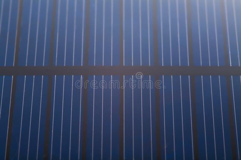 στενός ηλιακός επάνω κυττ στοκ φωτογραφίες