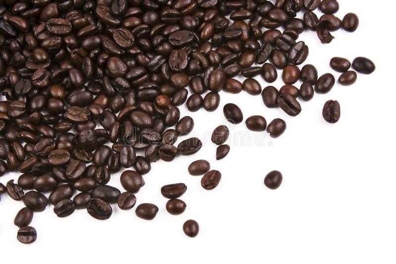 στενός καφές φασολιών επάνω στοκ εικόνες