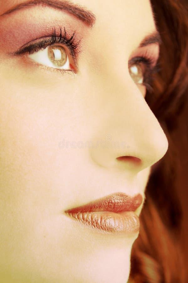 στενό πρόσωπο - επάνω στοκ εικόνα με δικαίωμα ελεύθερης χρήσης