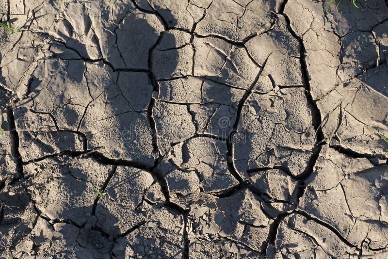 Στεριά που ραγίζεται από την ξηρασία στοκ φωτογραφία με δικαίωμα ελεύθερης χρήσης
