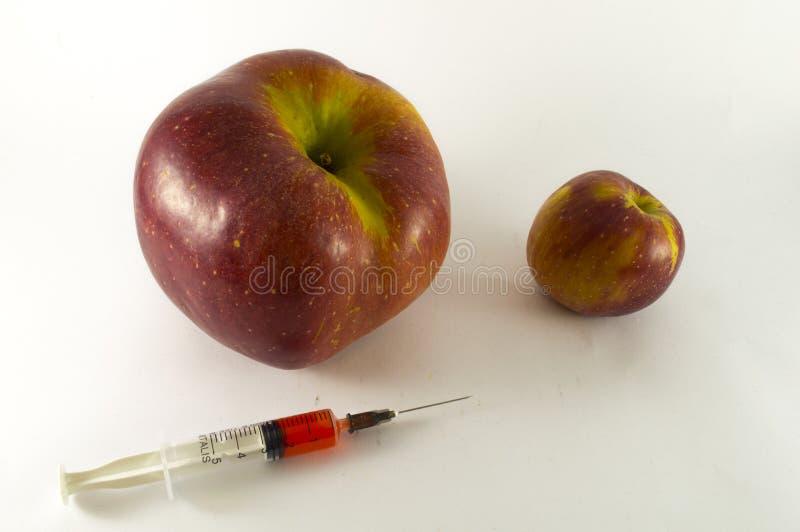 Στεροειδής βελόνα με τα μήλα στοκ φωτογραφία