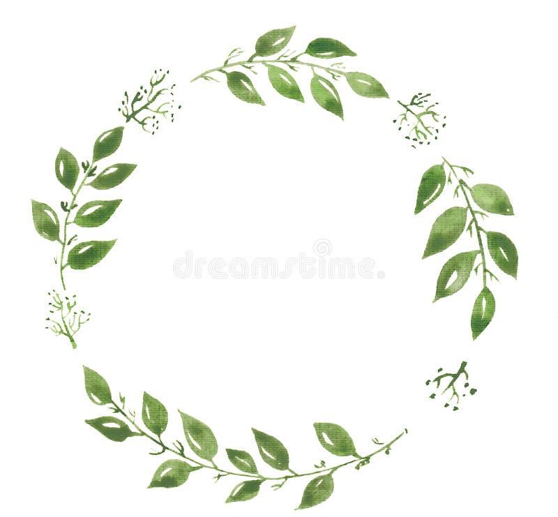 Στεφάνι απεικόνισης Watercolor, φύλλα πράσινα στοκ εικόνα