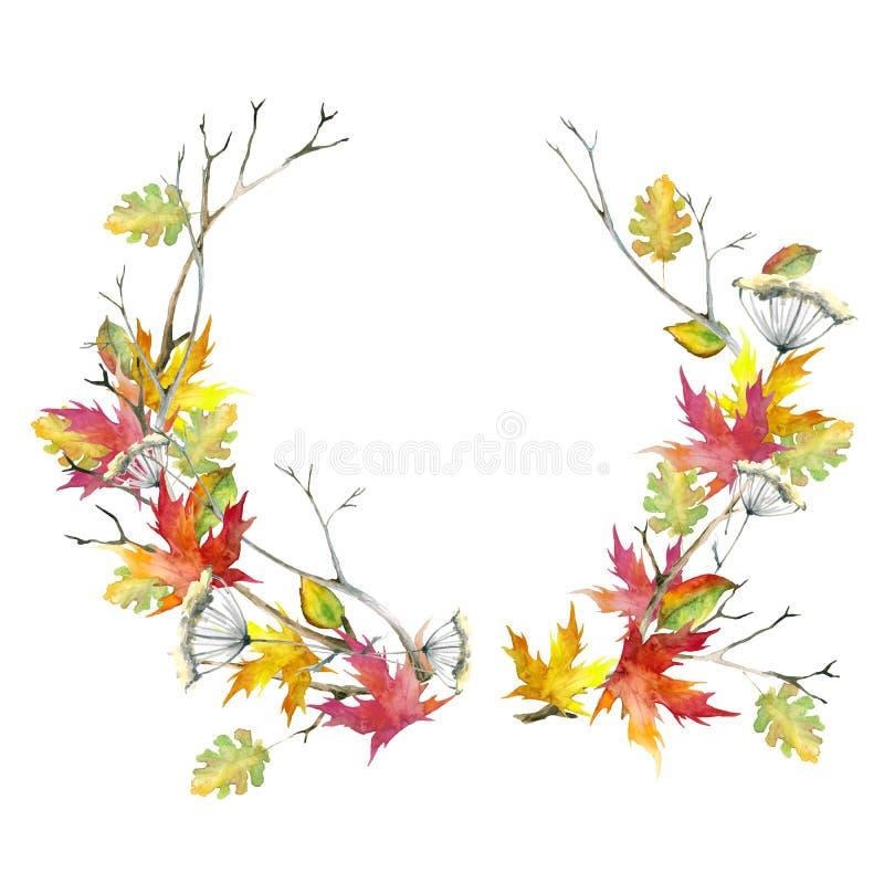 Στεφάνι των κλάδων και των ραβδιών, κλαδίσκοι, ξηρό λουλούδι, φύλλα σφενδάμου φθινοπώρου Watercolor, που απομονώνεται στο άσπρο υ απεικόνιση αποθεμάτων