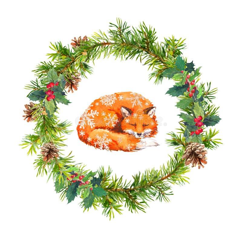 Στεφάνι Χριστουγέννων, αλεπού ύπνου και snowflakes Νέο watercolor έτους - κομψοί κλάδοι δέντρων, γκι, κώνοι απεικόνιση αποθεμάτων