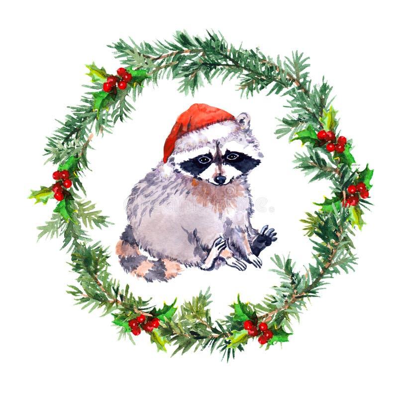 Στεφάνι Χριστουγέννων με το ρακούν στο κόκκινο καπέλο santa watercolor απεικόνιση αποθεμάτων