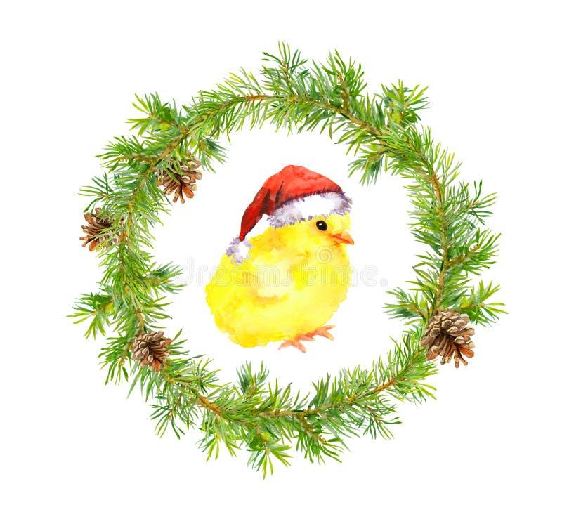 Στεφάνι Χριστουγέννων, μικρός κόκκορας στο κόκκινο καπέλο santa ` s Πουλί Watercolor στοκ φωτογραφία με δικαίωμα ελεύθερης χρήσης