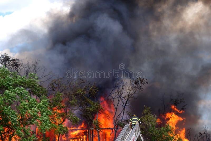 Στην πυρκαγιά στοκ φωτογραφίες
