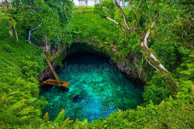 Στην ωκεάνια τάφρο Sua - διάσημη κολυμπώντας τρύπα, Upolu, Σαμόα, νότος στοκ εικόνες