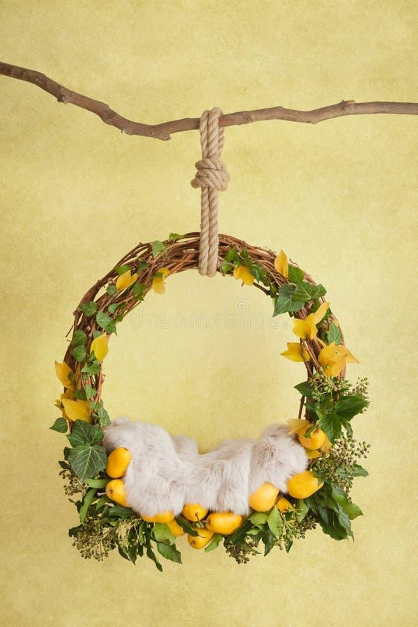 Στηρίγματα για τη φωτογράφιση των νεογνών, ένα κρεμώντας δαχτυλίδι σε έναν κλάδο με τα αχλάδια και τα φύλλα σε ένα κίτρινο στοκ φωτογραφία