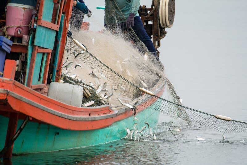 Στη βάρκα ψαράδων, που πιάνει πολλά ψάρια στοκ φωτογραφία με δικαίωμα ελεύθερης χρήσης