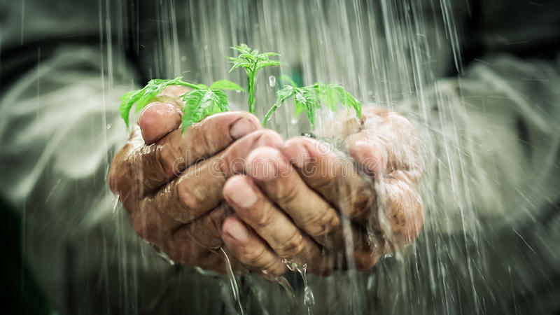 Στη βροχή στοκ φωτογραφίες
