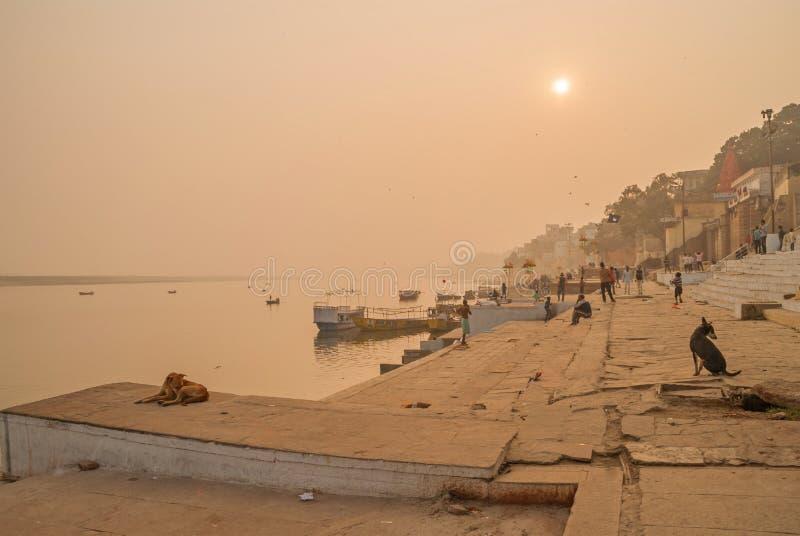 Στις 16 Ιανουαρίου του VARANASI, ΙΝΔΙΑ ποταμός του Γάγκη στοκ εικόνες με δικαίωμα ελεύθερης χρήσης