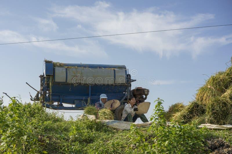 Στις 6 Ιουνίου του Ανόι, Βιετνάμ: Δύο μη αναγνωρισμένοι αγρότες παίρνουν ένα σπάσιμο από το ρύζι που χωρίζει τη μηχανή στη συγκομ στοκ εικόνες