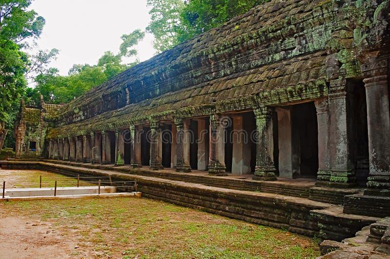 Στοά του TA Prohm, Angkor, Καμπότζη Ναός ζουγκλών με τα ογκώδη δέντρα που αυξάνονται από τους τοίχους του Επιδρομέας τάφων πυροβο στοκ εικόνες